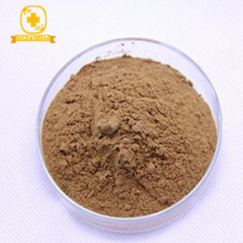 high quality panax Ginseng root Extract powder