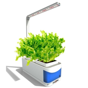 2019 New Design Indoor Plants Room Office 2 in 1 8.5W LED Table Light Desk Lamp