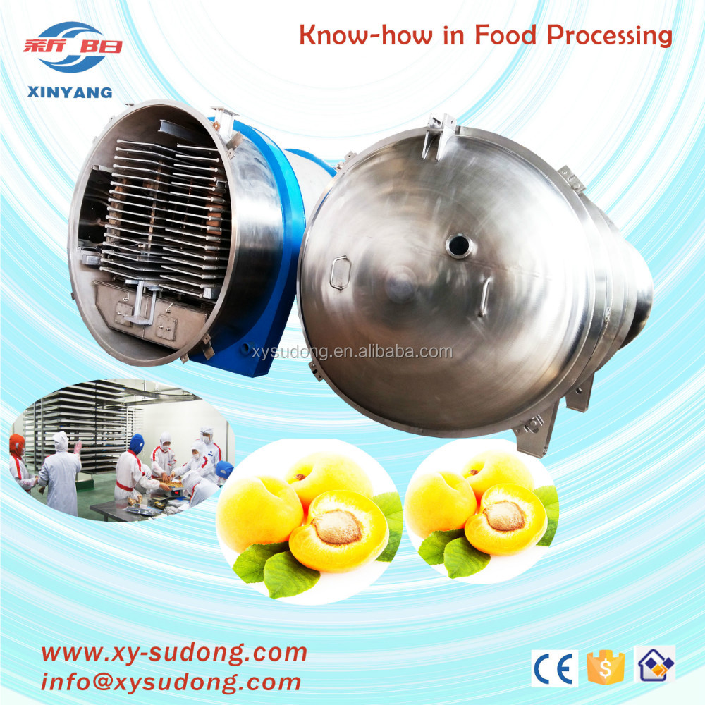 2000kg/batch fruit freeze dryer china for sale/vegetable freeze drying machine