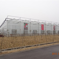 Multi Span Green House For Agriculture