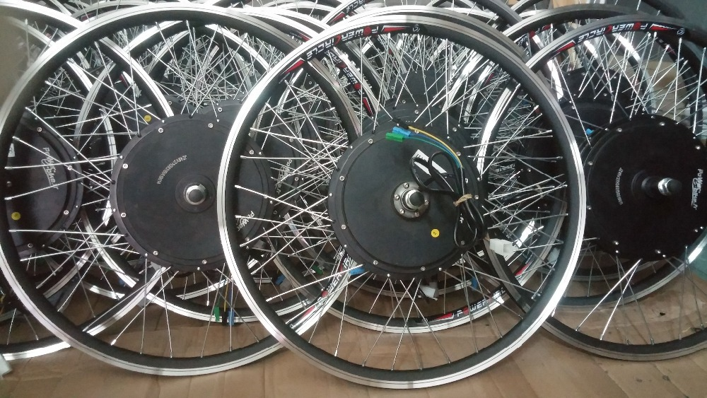 FH 205 Spokes Electric Bicycle Motor