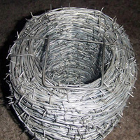 Wholesale high-quality low-carbon steel wire low price razor barbed wire for grass boundary, railway, highway, wine, prison, and