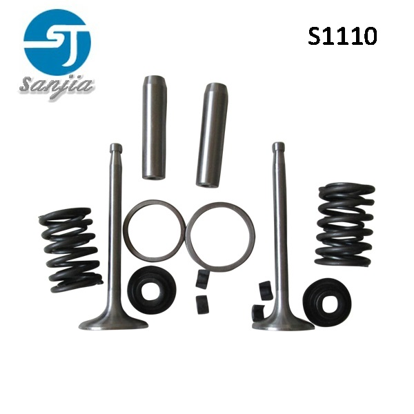 <strong>best</strong> pice S1110 engine valve / valve set from china factory/ valve seat valve guide and valve spring
