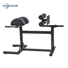 Fitness Equipment Swing Arm Glute Ham Developer GHD Factory Price