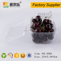 Disposable blister strawberry cherry fruit clamshell packaging