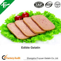Food Grade Edible Gelatin Powder for Beef Luncheon Meat