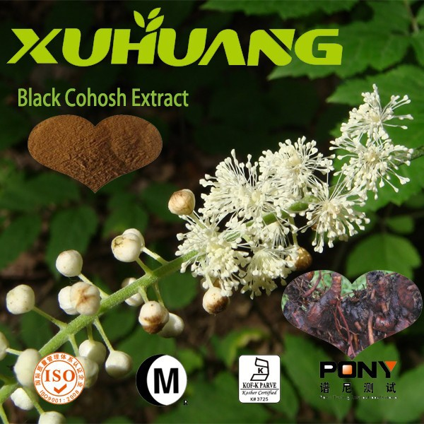 New products Black Cohosh extract 2.5%, 5%, 8%, raw materials