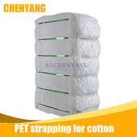 Chinese PET strap band roll for packing cotton bale