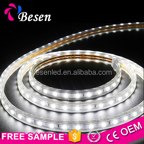 Ultra Bright High Power Voltage Two Color 660Nm 220V 5050 Dimmable 230V Full Spectrum 100M Constant Current 220V Led Strip Light