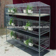 lapin cage/coney cage/rabbit farming cage