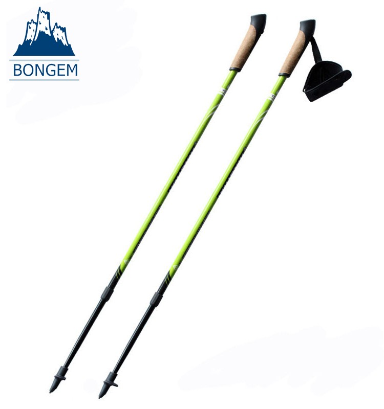 High quality wood handle good medallions hiking stick