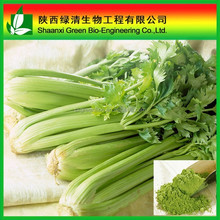 Competitive price Apigenin Powder, Natural Celery Extract, CAS No.: 520-36-5