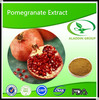 Best Price Pomegranate Extract Powder 10:1 20:1