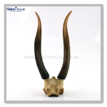 dcorative resin antelop head skull deer head skull
