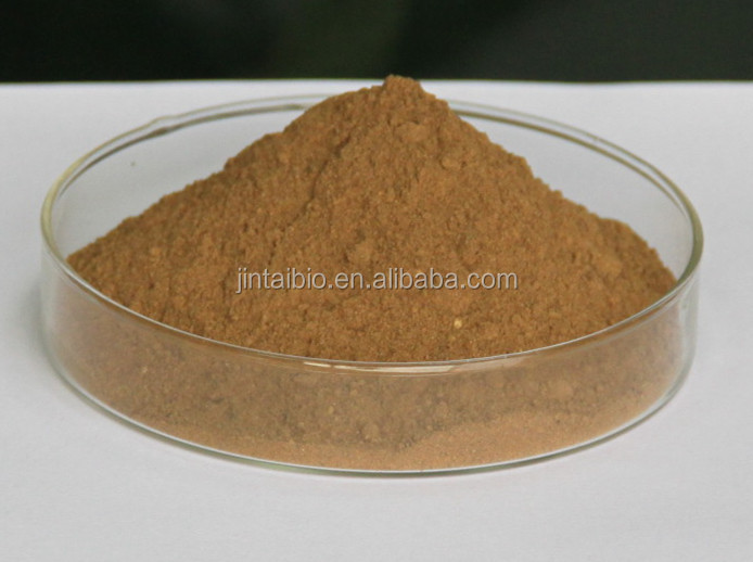high quality natural Burdock Root Extract