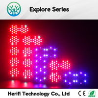 Wholesale 12 band hydroponic 300 400 500 600 800 1000 1200 1500 2000w cheap apollo plant grow lamp full spectrum led grow light