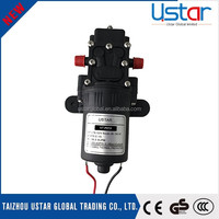 Professional design cheap agriculture water intelligent battery 12 volt pump for sprayer