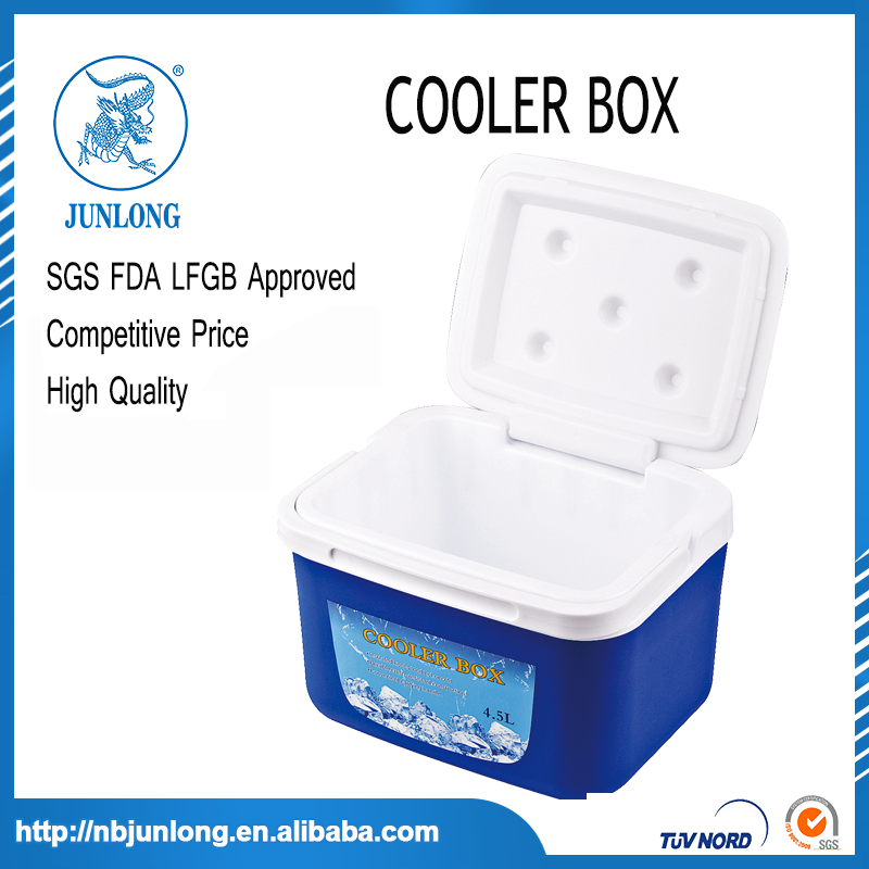 Portable Plastic Blue and White Small 5L Cooler Box