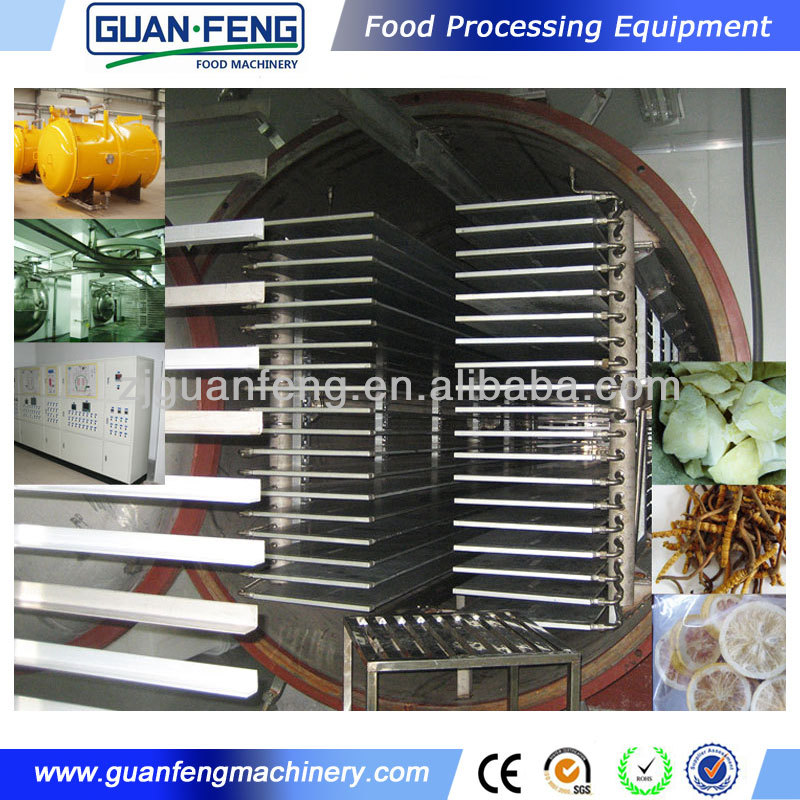 China industrial food and vegetable fruit vacuum freeze drying machine