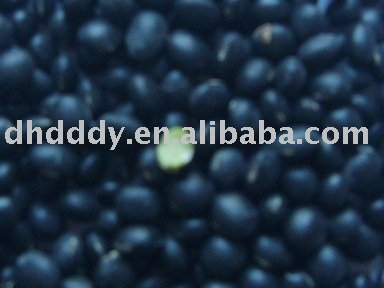 organic black soybean(green inside)