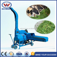 Highly efficient and stable ensilage cutter/crusher of grass