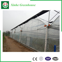 Hot quality low cost commercial greenhouse