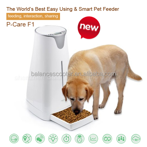Pets new inventions 4L large capacity interactive wifi pet food bowl ceramic dog bowls wholesale