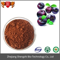 Competitive Price Natural Plant Extract Powder Plum Extract Fructus Mume Extract