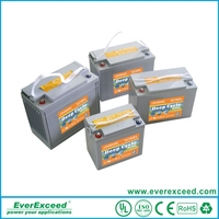 EverExceed rechargeable deep cycle 12v 100ah solar battery