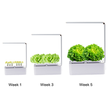 Led Innovation Smart Garden Hydroponics Light System Greenhouse Indoor Home Gardening Kit
