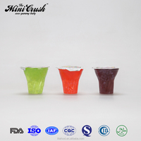 Hot Sale Tasty Mini Fruit Jelly