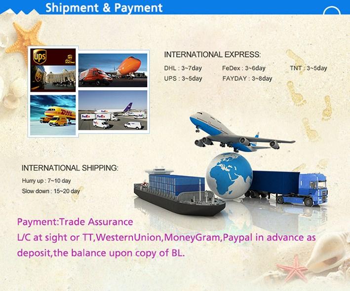 China Professional Supplier Trade Assurance Logo Printing ...