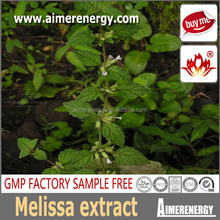 Pure natural plant extract melissa officinalis extract