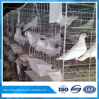 High Quality racing Pigeon Breeding Cage