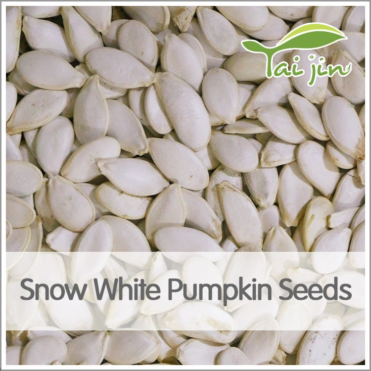 high quality different types of snow white pumpkin seed