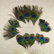 Wholesale DIY feathers Artificial Peacock Feathers