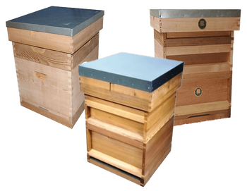 2018 Design customized dimensions cheap German national super bee hive box hives for beekeeping or sale