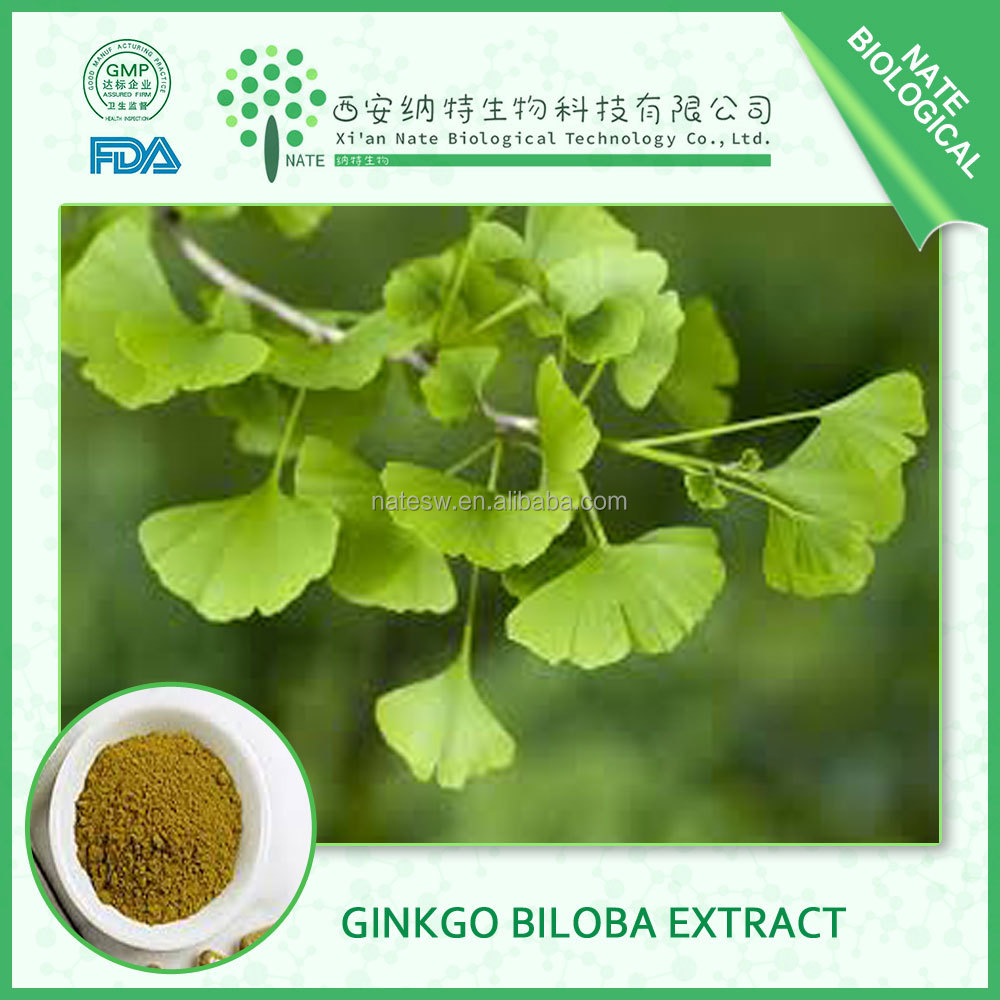 Herbal Ginkgo Biloba Leaves Extract made in china