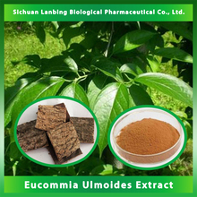 China Pharmaceutical and Chemical Research Chlorogenic Acid 10%~ 98% herbal Eucommia Ulmoides Extract