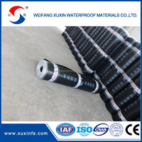 APP & sbs modified bitumen torch appliedwaterproof membrane
