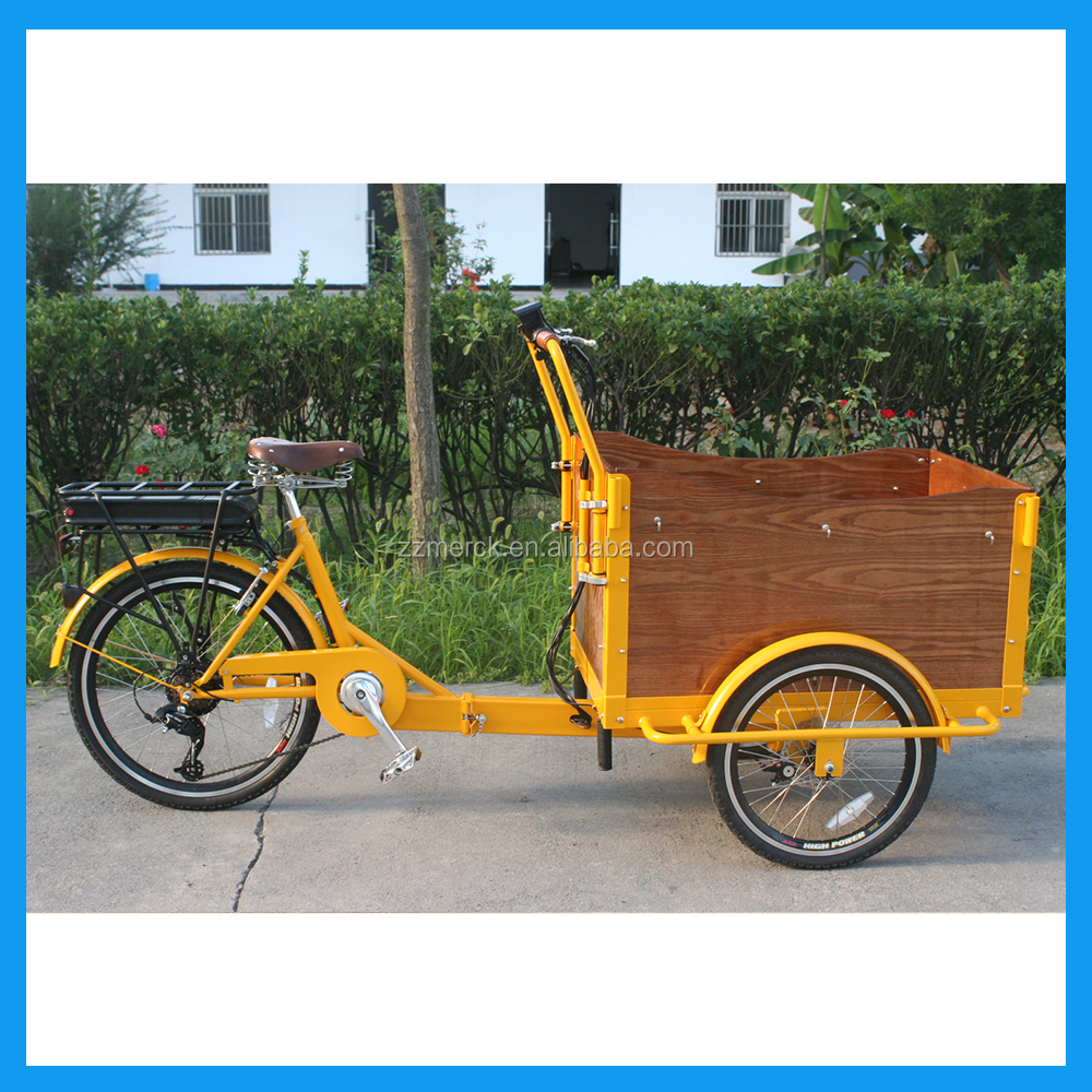 Manufacturer Three Wheel Front Box Pedal assist Electric Cargo Trike