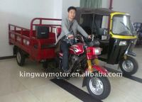 250cc gasoline engine bicycle 3 wheel trike/three wheel cargo motorcycles for sale