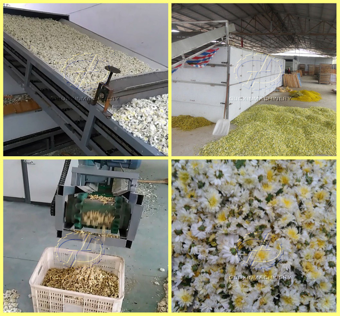 high yield konjac chips washing peeling drying production line