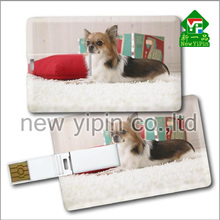 New Yipin Latest Designer Plastic Cards Logo Customized Pen Drive Card Reader