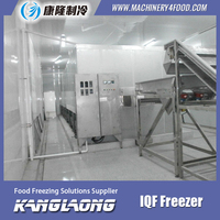 2000Kg/H iqf sweet corn freezing fast machine with great price