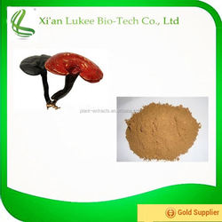 High Quality Plant Extract Ganoderma P.E. 50% Polysaccharide