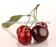 natural acerola cherry extract powder