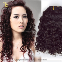 Directly Factory 8a 7a 6a 5a grade unprocessed remy wholesale cheap virgin distributor wholesaler curly brazilian hair