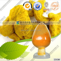 Manufacturer Supply All Kinds bulk Curcumin powder extract with Kosher Certified 95%