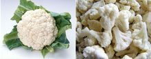 Chinese Factory Market Price Healthy Food IQF Frozen fresh cauliflower